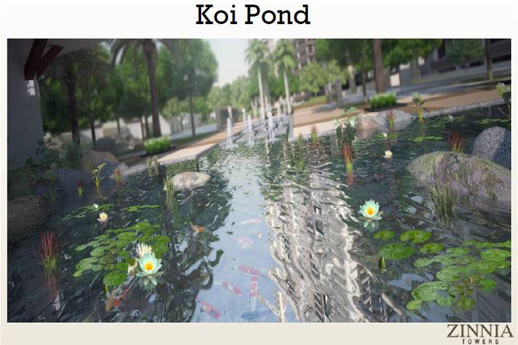 DMCI Homes Koi Pond